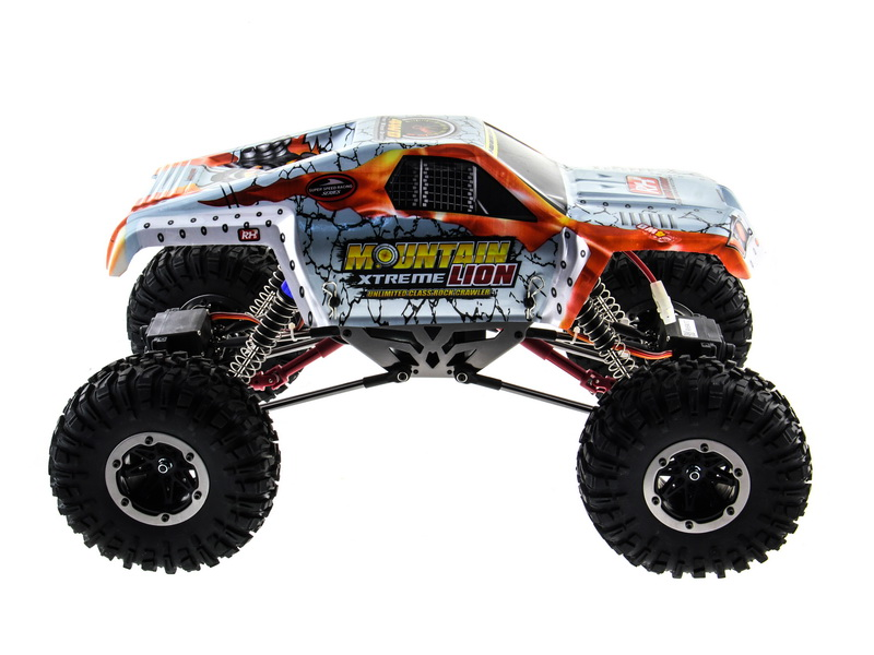 remo hobby lion – 006