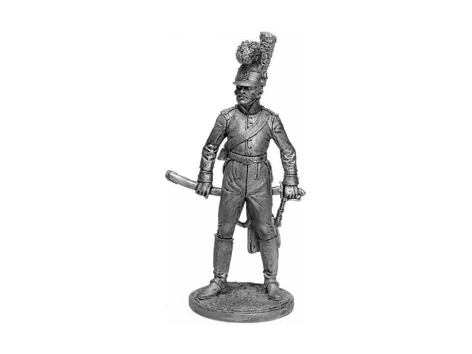 Униформа и вооружение португальских кавалерийских полков в период с 1806 по 1810 годов были унифицированы.